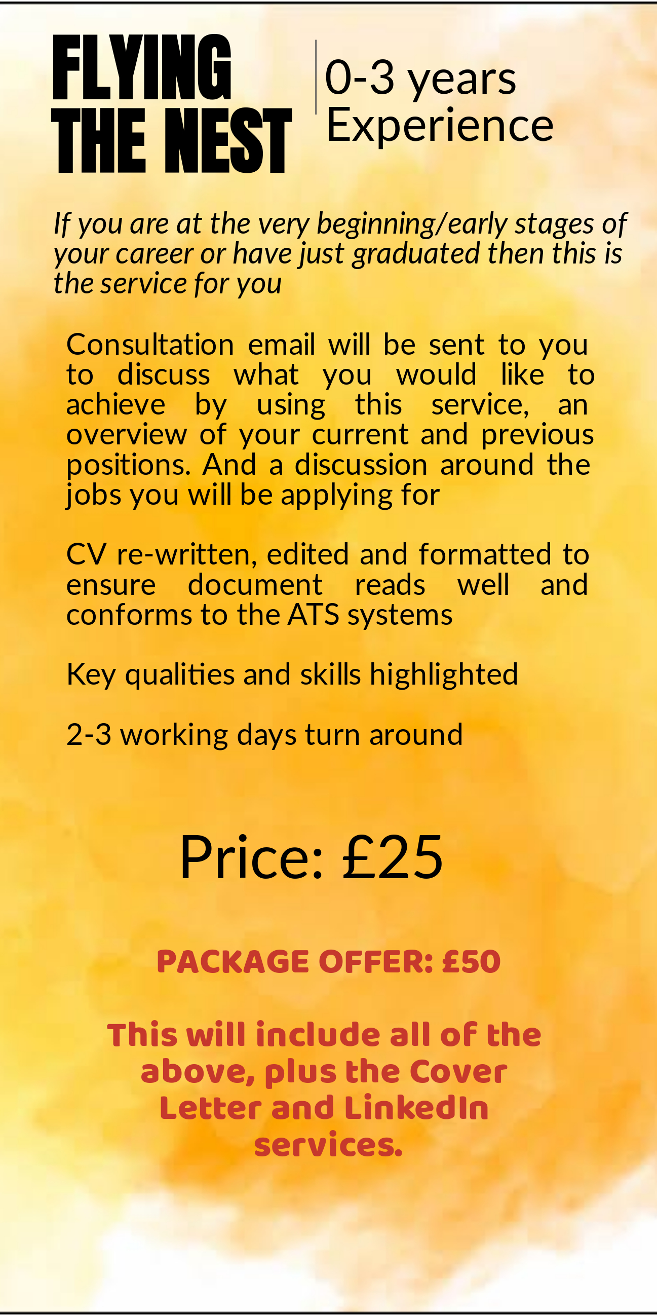 Professional CV writing service